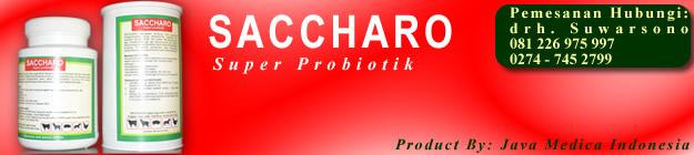 header-saccharo1