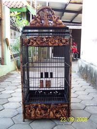 sangkar-cakra-008