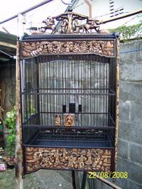 sangkar-cakra-033