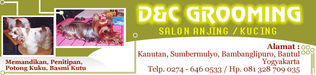 banner-dc-grooming