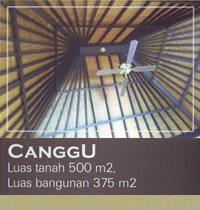 cangu-2