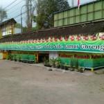 jamur yogyakarta3
