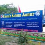 jamur yogyakarta5