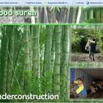 Relaunching BambooSuren.Com
