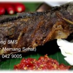 Kedai Ikan Bakar SMS (Segar Memang Sehat) Ikan Bakar Jogja – Lele Bakar – Nila Bakar