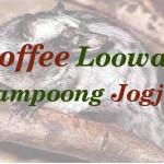 Coffee Loowak Kampoong Jogja