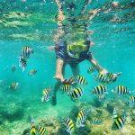 Paket Wisata Jogja Rp 600 Ribu Heha View Sunset – Pantai Indrayanti – Snorkeling Pantai Nglambor